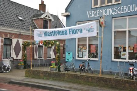 Westfriese mini Flora